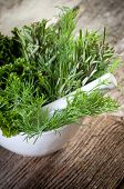 aromatic herbs over mortar