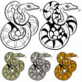 An image of a snake drawing.