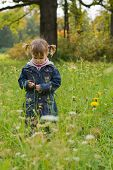 Girl At The Meadow