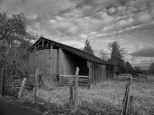 Barn Black And White