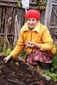 The woman lands garlic