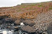 Basalt Columns On An Ocean Shore