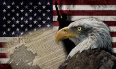 stock photo of eagle  - Bald eagle and the silhouette of the statue of liberty and the Marine Corps War Memorial monument with some historical documents on the american flag - JPG
