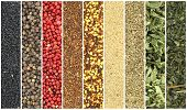 Banners of herbs and spices