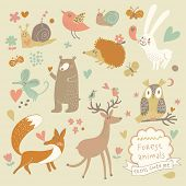 Vector set of cute wild animals in the forest: fox, bear, hedgehog, rabbit, snail, deer, owl, bird,