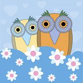 funny cartoon illustration owls