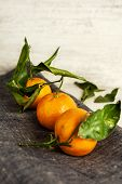 Tangerines On Gray Napkin. Wooden Background.