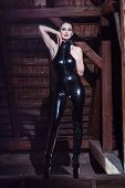 Sexy Dominatrix Posing On Timber
