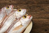 image of fish skin  - Fresh fish red snapper in a plate