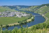 Trittenheim, Mosel Valley, Germany