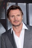 Liam Neeson at the