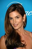 Cindy Crawford  at the 2009 UNICEF Ball Honoring Jerry Weintraub, Beverly Wilshire Hotel, Beverly Hi