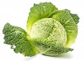 Fresh Savoy Cabbage On White Background