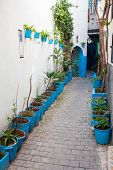 Narrow Street With Houseplants In Medina. Tangier, Morocco