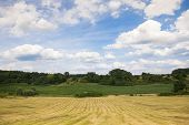 Lansdscape With Haymaking
