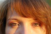 Women Green Eyes In Warm Sun
