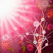 Sun Sunrays Shows Florals Beam And Floral