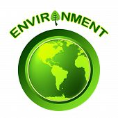 Globe Environment Represents Go Green And Earth