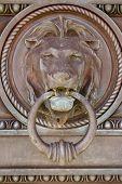 Metal Lion door knocker
