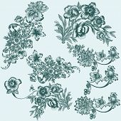 Collection Of Vector Hand Drawn Floral Elements