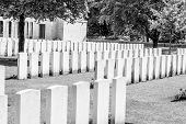 image of world war one  - New British Cemetery world war 1 flanders fields - JPG