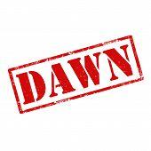 Dawn-stamp
