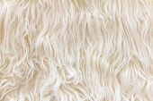 sheepskin texture background