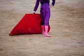 The Barefoot Bullfighter