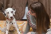 Dalmatian And Girl