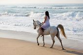 girl in white dress enjoying horse ride on the beach