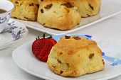Freshly baked English scone