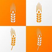 Wheat Ears Icons Eps10