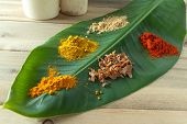 Nutmeg, curry, paprika, pepper and curcuma spices on a green banana leaf