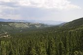 Valley Below Bear Lake
