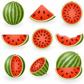 Icon Set Watermelon