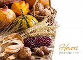 Harvest Background