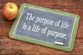 picture of slating  - the purpose of life is a life of purpose  - JPG