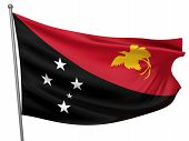 pic of papua new guinea  - Papua New Guinea National Flag  - JPG