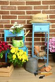 Flowers in pot on chair, potting soil, watering can and plants on floor on bricks background. Planting flowers concept