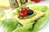Crispbread With Cheese And Ladybug