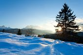 Sunset Over Snowy Meadow In Alps