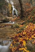 Autumn Waterfall In The Forest