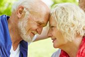 Senior couple in love looking at each other in nature in summer