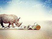 walking rhino and dollar carpet 3d