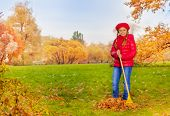 Beautiful girl with rake cleans grass from leaves