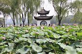 Taoranting park, Beijing