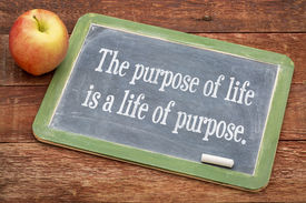 pic of slating  - the purpose of life is a life of purpose  - JPG