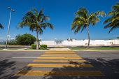 pic of pedestrian crossing  - Pedestrian crossing on tropical street road - JPG