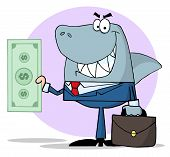 Business Shark Holding Cash