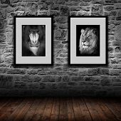 interior room with gray stone wall and 2 pictures - mandrill and lion